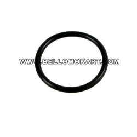 O- ring distanziale pignone tm