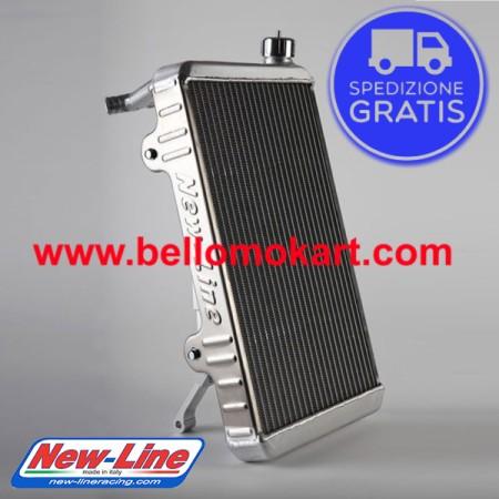 radiatore new line RS