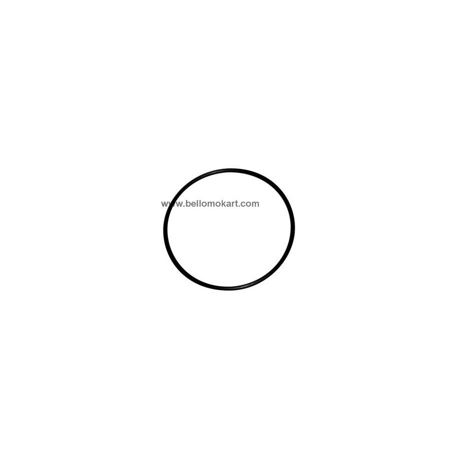 O-ring esterno