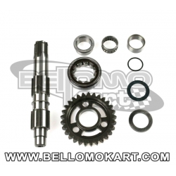kit albero secondario new d. 21 mm