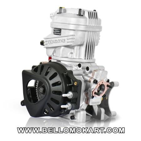 motore IAME  X30  TAG  senior 2020
