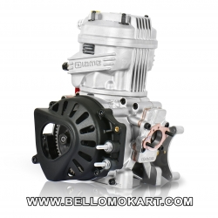 motore IAME  X30  TAG  junior