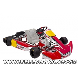 Birel Art CRY S10  KZ