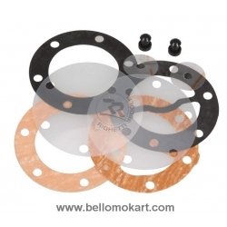 kit revisione pompa benzina mikuni NEW