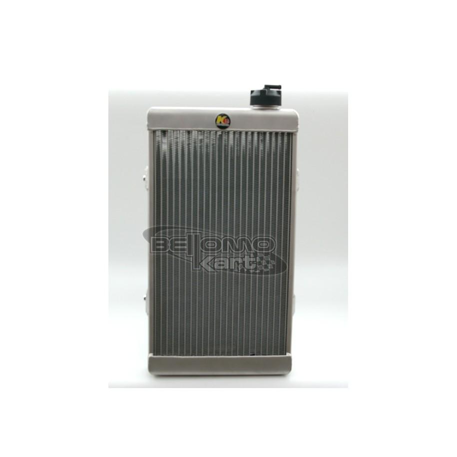 Radiatore SPECIAL PLUS 450 x 245 completo di  ATTACCHI